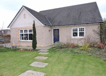 Thumbnail 4 bedroom bungalow to rent in Provost Clemo Drive, Insch, Aberdeenshire