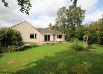 Thumbnail 4 bed bungalow for sale in Goddards Close, Cranbrook, Kent
