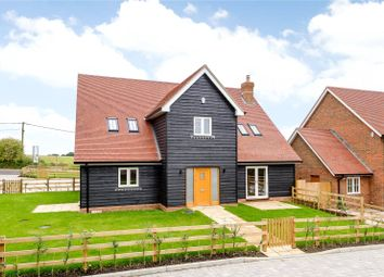 Thumbnail 4 bed detached house for sale in Wood Hill Lane, Long Sutton, Hampshire