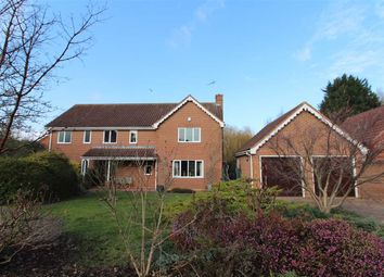 Thumbnail 5 bed detached house for sale in Daundy Close, Ipswich