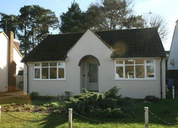 Thumbnail 2 bed detached bungalow to rent in Oriental Road, Ascot