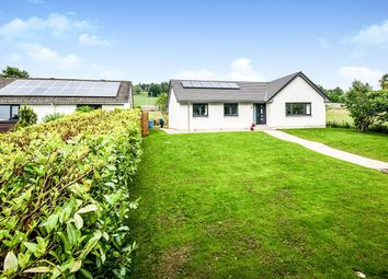 Thumbnail 3 bed bungalow for sale in Dingwall