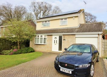 Thumbnail 4 bedroom detached house for sale in Briar Close, Lowestoft
