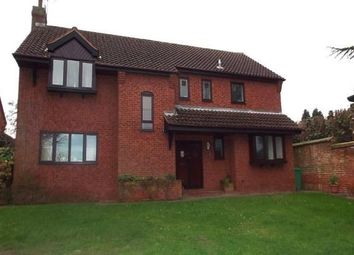 Thumbnail 5 bed detached house to rent in Rectory Gardens, Nottingham