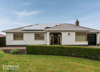 Thumbnail 3 bed detached bungalow for sale in Farrenlester Road, Coleraine, County Londonderry