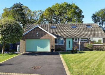 Thumbnail 5 bedroom chalet for sale in Birchwood Close, Highcliffe, Christchurch