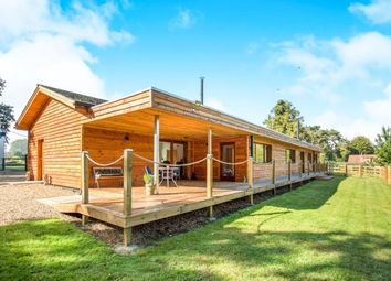 Thumbnail Equestrian property for sale in Thetford, Norfolk