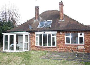 Thumbnail 4 bedroom bungalow to rent in Old Bedford Road, Luton