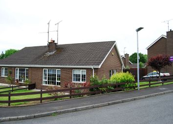 Thumbnail 2 bed bungalow for sale in Kensington Park, Portadown