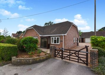Thumbnail 3 bed detached bungalow for sale in Stony Lane, Holwell, Sherborne