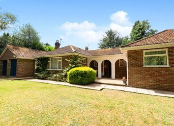 Thumbnail 3 bedroom bungalow for sale in Haslemere, Surrey, United Kingdom