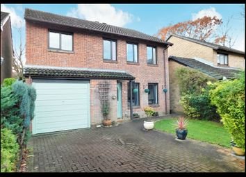 Thumbnail 4 bed detached house for sale in Olivers Close, Southampton
