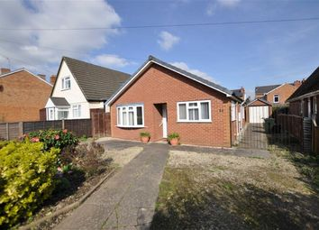 Thumbnail 2 bed detached bungalow to rent in Cromwell Road, Malvern