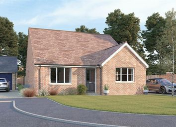 Thumbnail 3 bed detached bungalow for sale in Elm Tree Close, Shireoaks, Worksop