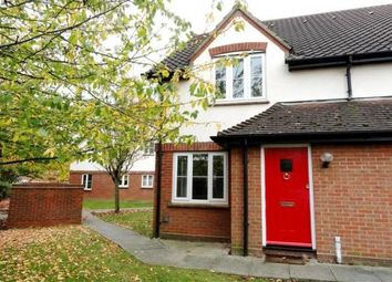 Thumbnail 1 bed property to rent in Jeffcut Road, Springfield, Chelmsford