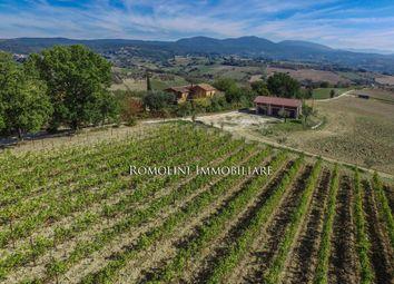 Thumbnail Farm for sale in Narni, Umbria, Italy