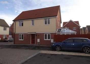 Thumbnail 3 bed detached house for sale in Stanway, Colchester, Essex
