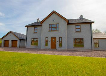Thumbnail 5 bedroom property for sale in 121 Moneygar Road, Trillick, Omagh