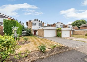 Thumbnail 4 bed detached house for sale in Albury Drive, Pinner, Middlesex