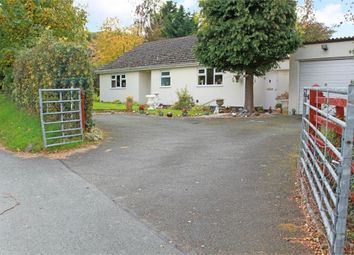 Thumbnail 3 bed detached bungalow for sale in Crew Green, Shrewsbury, Powys