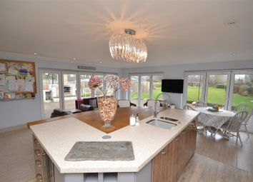Thumbnail 5 bed detached bungalow for sale in Low Common, Deopham, Wymondham