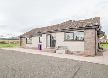 Thumbnail 4 bed detached house to rent in Brechin