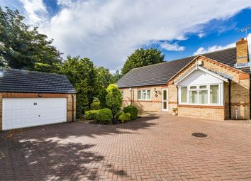 Thumbnail 3 bed detached bungalow for sale in Lindrick Close, Worksop, Nottinghamshire