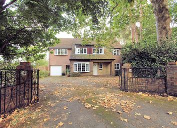 Thumbnail 5 bed detached house to rent in Lincoln Drive, Pyrford, Woking