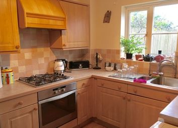 Thumbnail 3 bed property to rent in Pillmere Drive, Pillmere, Saltash