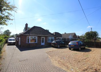 Thumbnail 2 bed detached bungalow to rent in New Road, Norwich