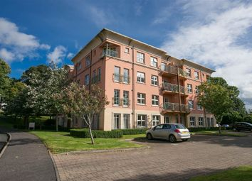 Thumbnail 2 bedroom flat for sale in 45, Danesfort, Belfast