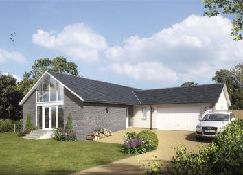 Thumbnail 4 bed detached house for sale in Milton Road, Finavon