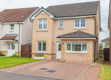 Thumbnail 4 bed detached house for sale in Sandpiper Meadow, Alloa