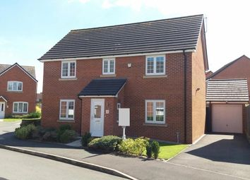Thumbnail 4 bedroom detached house for sale in Snowgoose Way, Newcastle-Under-Lyme