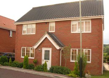 Thumbnail 5 bed detached house to rent in Rimer Close, Norwich