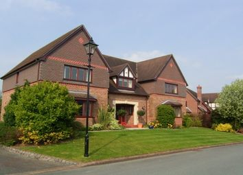 Thumbnail 4 bed detached house to rent in Northop Country Park, Northop, Mold