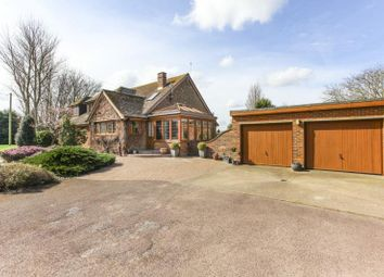 Thumbnail 4 bed detached house to rent in Nash, Ash, Canterbury