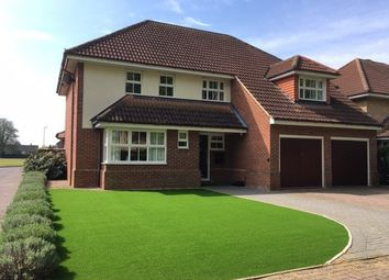 5 bed detached house for sale in Williams Close, Ely CB7