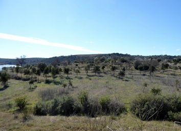 Thumbnail Farm for sale in L351, 89 Ha Farm Contiguous To Guadiana River, Alentejo, Portugal, Portugal