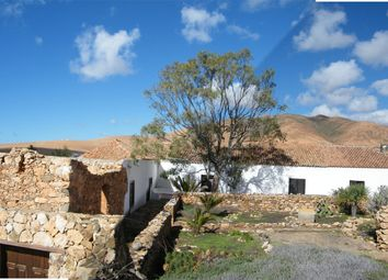 Thumbnail 6 bed country house for sale in Original Historic Finca, Pájara, Fuerteventura, Canary Islands, Spain
