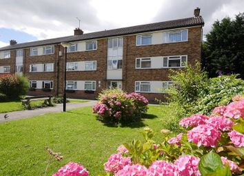 Thumbnail 2 bed flat to rent in West Moor Flats, Fordlands Crescent, Fulford, York
