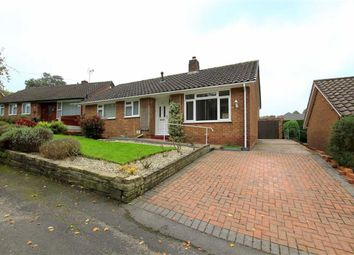 Thumbnail 2 bed detached bungalow for sale in Pistyll, Holywell, Flintshire