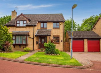 Thumbnail 4 bed detached house for sale in Paignton Close, Middlesbrough, North Yorkshire
