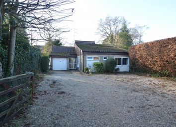 Thumbnail 4 bedroom bungalow for sale in Gorse Ride North, Finchampstead
