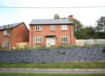Thumbnail 4 bedroom detached house for sale in Shaston Road, Stourpaine, Blandford Forum, Dorset