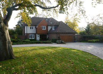 Thumbnail 5 bed detached house to rent in Taryn Grove, Bickley