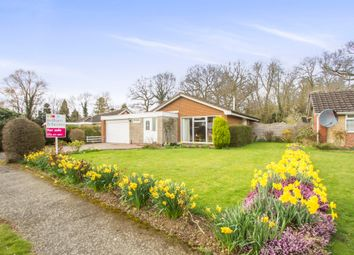 Thumbnail 3 bedroom detached bungalow for sale in Kingsway Road, Leicester