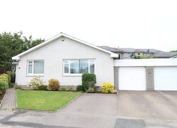 Thumbnail 3 bed bungalow to rent in Whinhill Gardens, Ferryhill