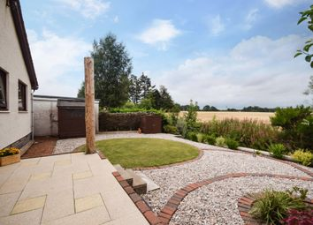 Thumbnail 3 bed detached bungalow for sale in Ochil Gardens, Dunning, Perthshire