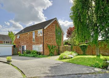 Thumbnail 4 bed detached house for sale in Smeefield, Hilton, Huntingdon